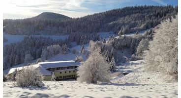 Schwarzwald, Hotel Gut Lilienfein 4 * : 1 bis 4 Nächte für 2 inklusive Frühstück und 3-Gänge-Menu, Romantik-Pärchenzimmer
